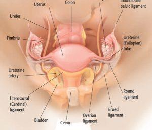 Laparoscopic Surgeon in Pimple Saudagar